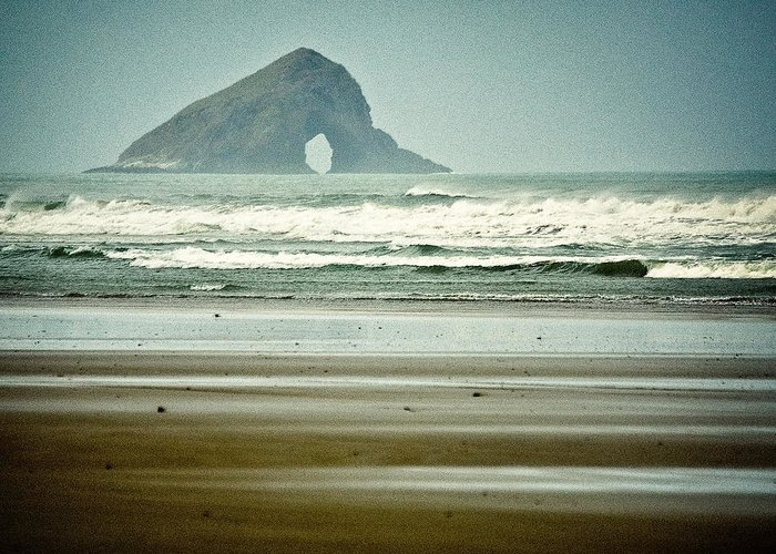 Seascape Greeting Card featuring the photograph Ninety Mile Beach by Dave Bowman