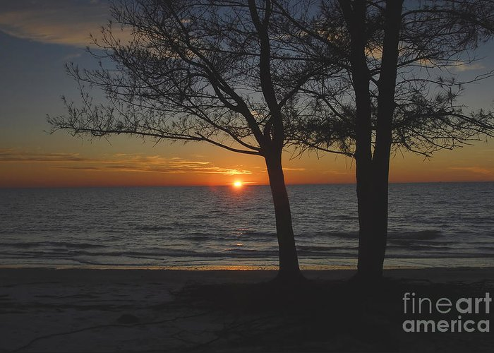 Beach Greeting Card featuring the photograph North Beach Sunset by David Lee Thompson