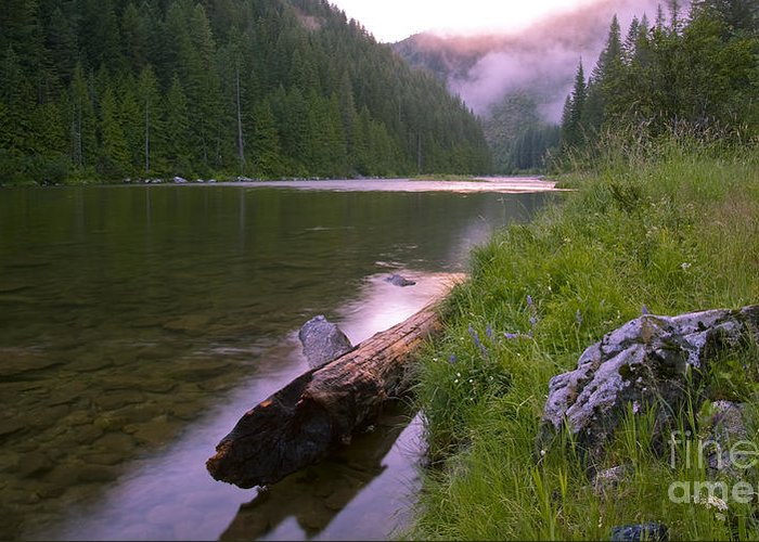Kelly Creek Greeting Card featuring the photograph North Fork Of The Clearwater by Idaho Scenic Images Linda Lantzy