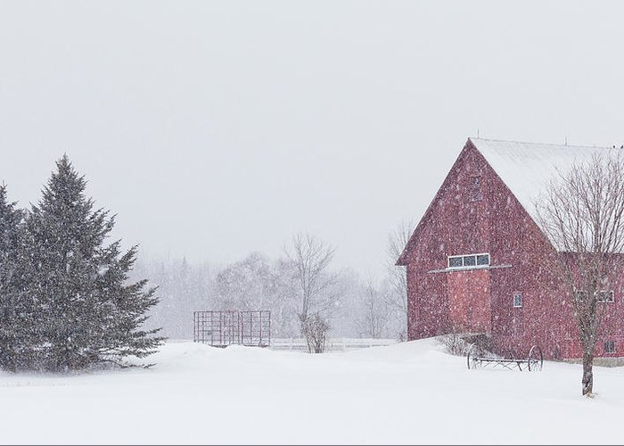 Winter Greeting Card featuring the photograph Northeast Kingdom Snowfall by Alan L Graham