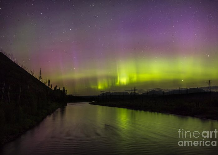 Glacier Greeting Card featuring the photograph Northern Lights Over The North Fork Of The Flathead River by Heavens Peak