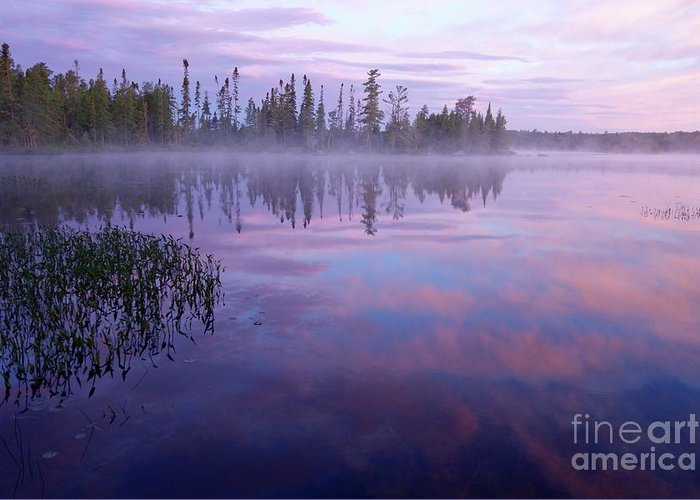 Sunrise Greeting Card featuring the photograph Northern Morning Beauty by Sandra Updyke