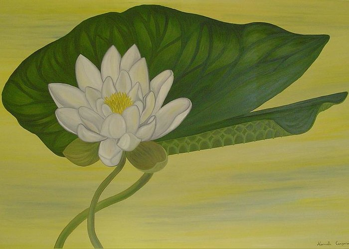 Marinella Owens Greeting Card featuring the painting Nymphaea Alba by Marinella Owens