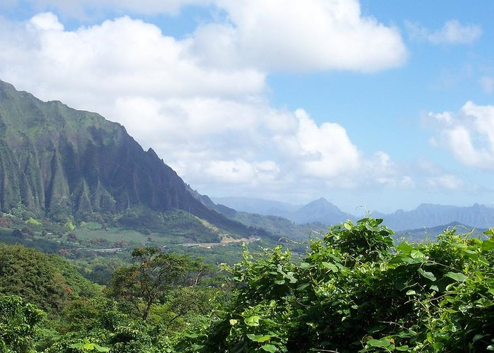 Trees Greeting Card featuring the photograph Oahu Mountain by Dawn Marie Black