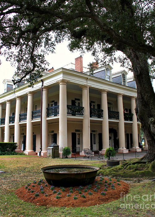 Oak Alley Greeting Card featuring the photograph Oak Alley Plantation by Perry Webster