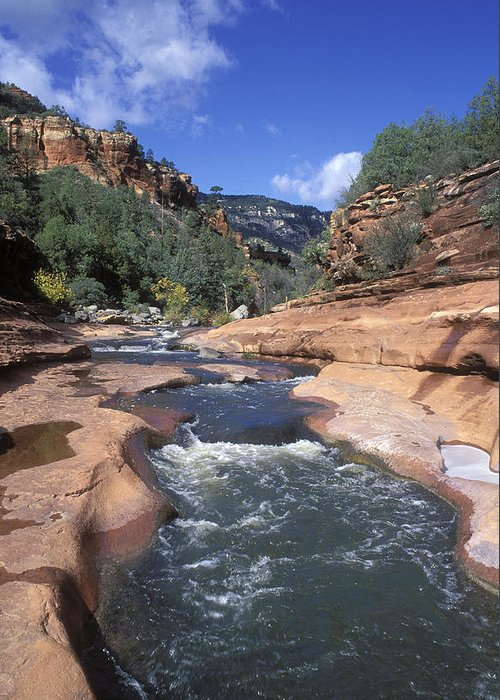Oak Creek Greeting Card featuring the photograph Oak Creek Flowing Through The Red Rocks by Rich Reid