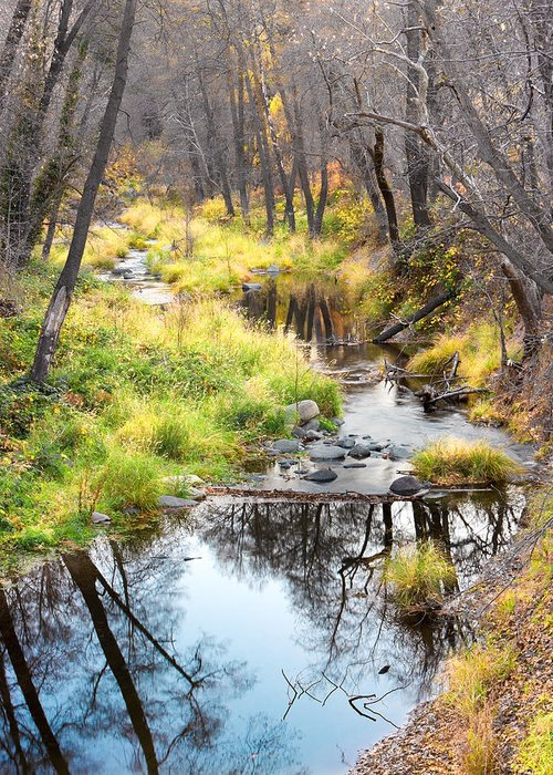 Canyon Greeting Card featuring the photograph Oak Creek Twilight by Carl Amoth