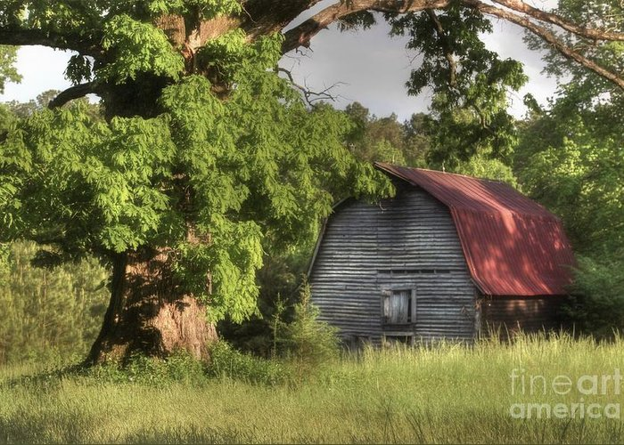 Barn Greeting Card featuring the photograph Oak Framed Barn by Benanne Stiens