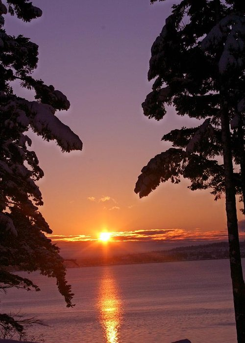 Sunrise Greeting Card featuring the photograph Oak Harbor Sunrise II Sr 2002 by Mary Gaines