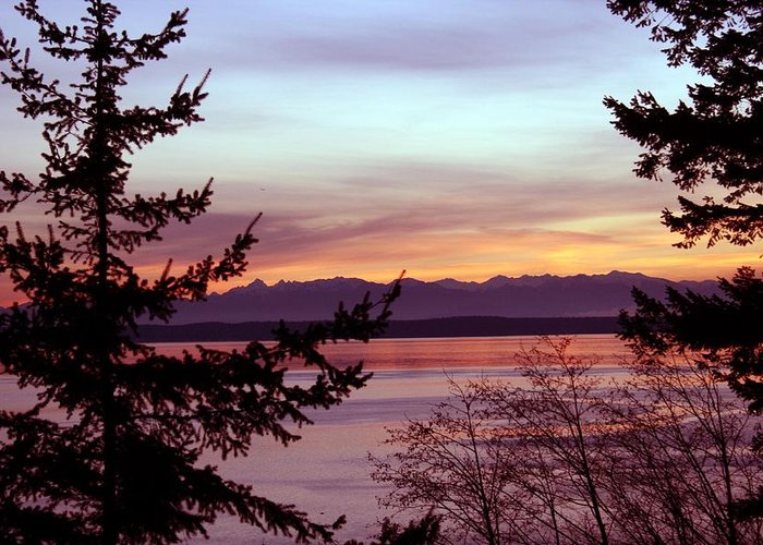Sunset Greeting Card featuring the photograph Oak Harbor Sunset 1016 by Mary Gaines