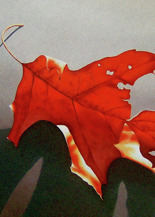 Leaf Greeting Card featuring the painting Oak Leaf 1 by Timothy Jones