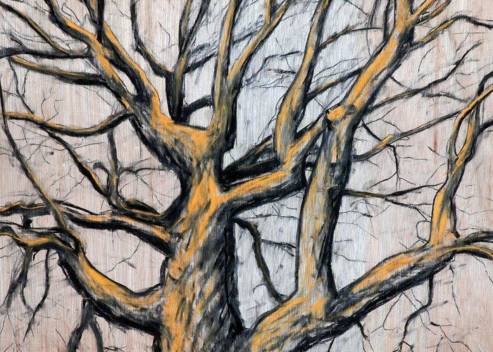 Tree Greeting Card featuring the drawing Oak Tree by John Terwilliger
