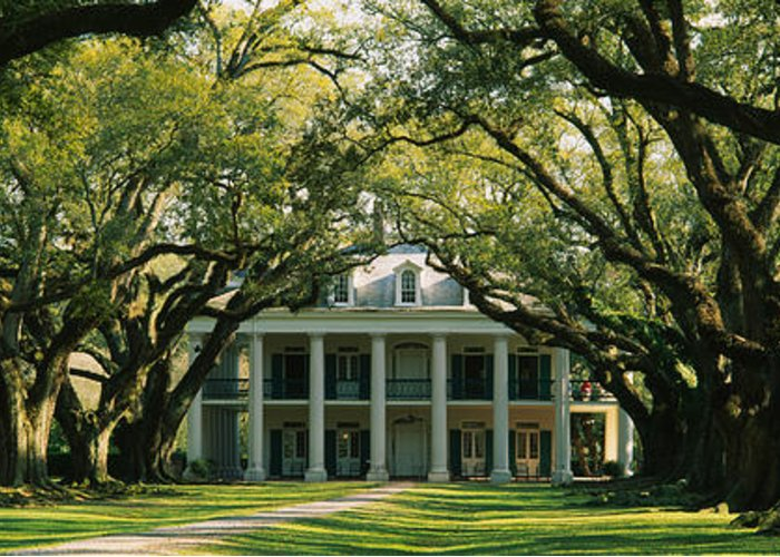 Oak Alley Plantation Photographs Greeting Cards