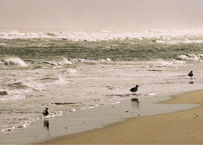 Seascape Greeting Card featuring the photograph Ocean Edge by Steve Karol