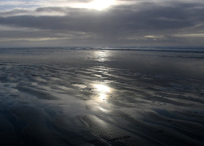Ocean Greeting Card featuring the photograph Ocean Shores by Ty Nichols