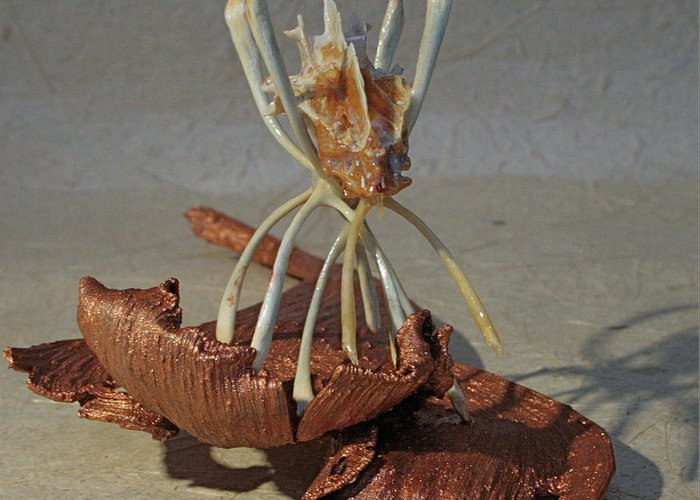 Sculpture Greeting Card featuring the sculpture Ocean Spider by Ruth Edward Anderson