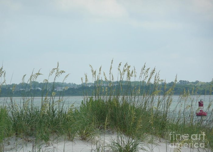 Scenery Greeting Card featuring the photograph Oceanview Through Seaoats by Barb Montanye Meseroll
