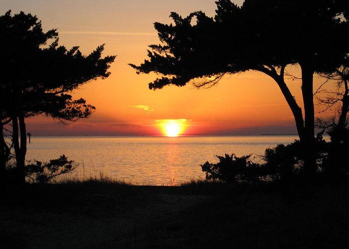Ocracoke Greeting Card featuring the photograph Ocracoke Island Winter Sunset by Wayne Potrafka