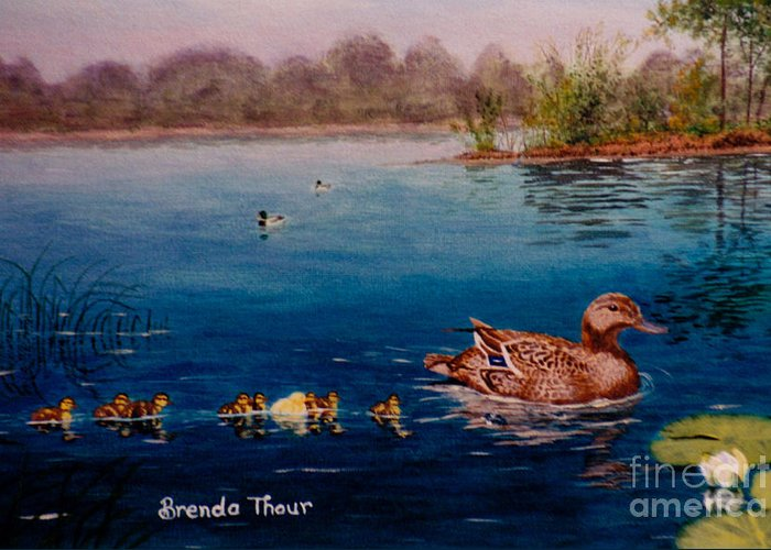 Duck Greeting Card featuring the painting Odd Duck Out by Brenda Thour