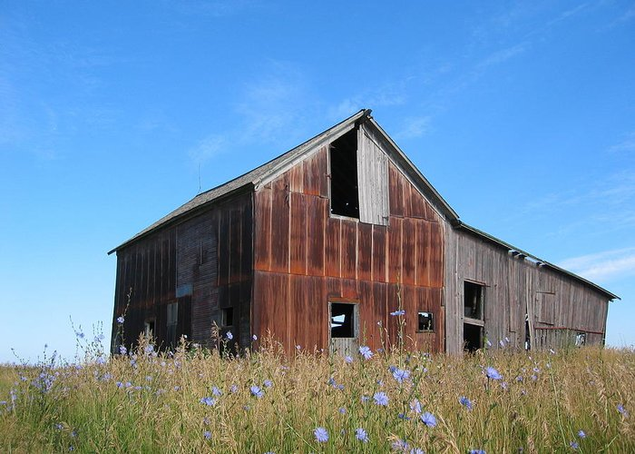 Landscape Greeting Card featuring the photograph Odell Barn I by Dylan Punke