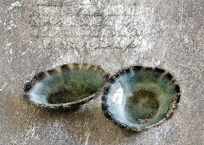 Seashells Greeting Card featuring the photograph Of The Sea 2 by Betty LaRue