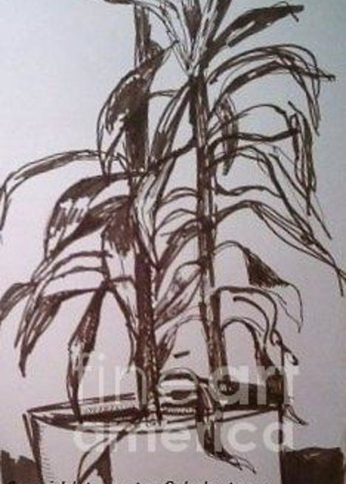 Plants Greeting Card featuring the drawing Office Plant by Jamey Balester