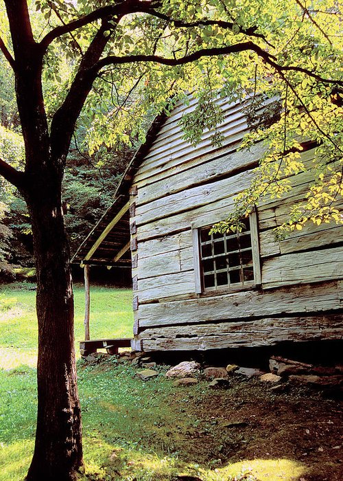Log Cabin Greeting Card featuring the photograph Ogle Cabin by Alan Lenk