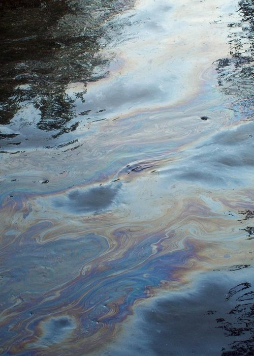 Oil Slick Greeting Card featuring the photograph Oil Slick by Michelle BarlondSmith