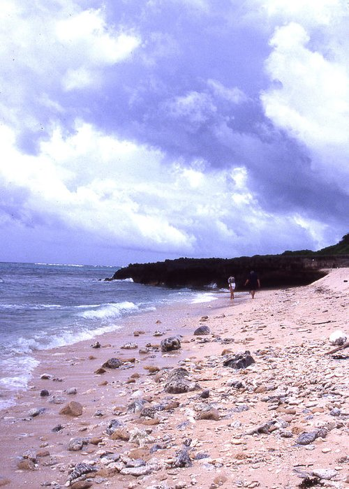 Okinawa Greeting Card featuring the photograph Okinawa Beach 15 by Curtis J Neeley Jr