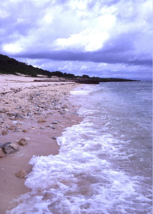 Okinawa Greeting Card featuring the photograph Okinawa Beach 17 by Curtis J Neeley Jr