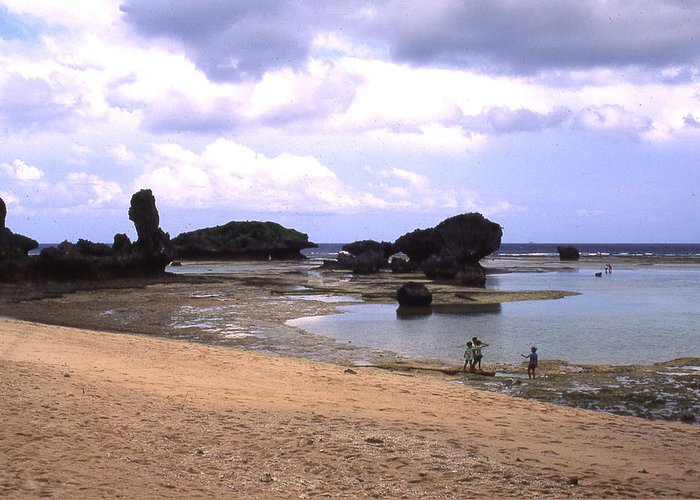 Okinawa Greeting Card featuring the photograph Okinawa Beach 18 by Curtis J Neeley Jr