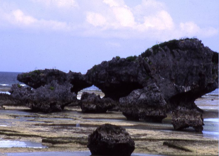Okinawa Greeting Card featuring the photograph Okinawa Beach 2 by Curtis J Neeley Jr
