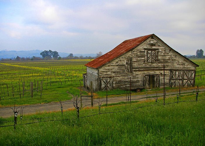 Barn Greeting Card featuring the photograph Old Barn In The Mustard Fields by Tom Reynen