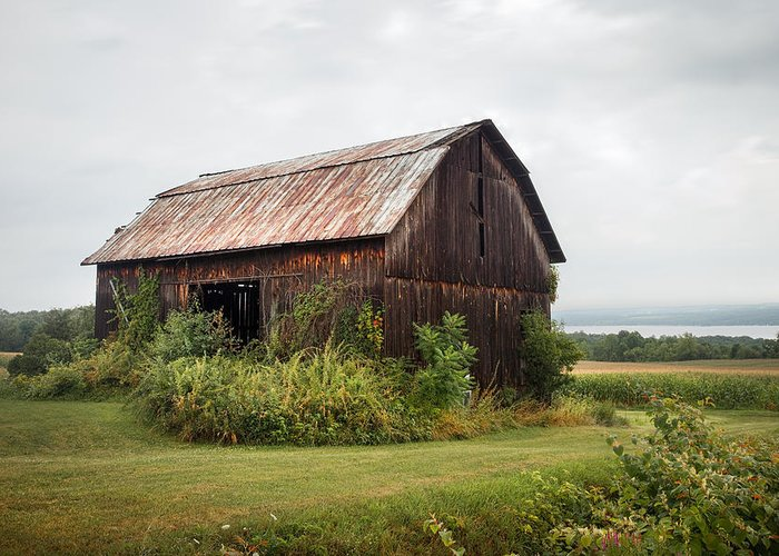 Barn Greeting Card featuring the photograph Old Barn On Seneca Lake - Finger Lakes - New York State by Gary Heller