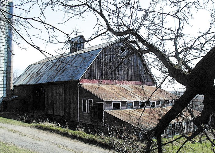 Farmstead Greeting Card featuring the photograph Old Barn With Tree Watercolor by Laurie With