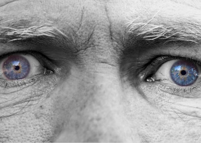 Eyes Greeting Card featuring the photograph Old Blue Eyes by James BO Insogna