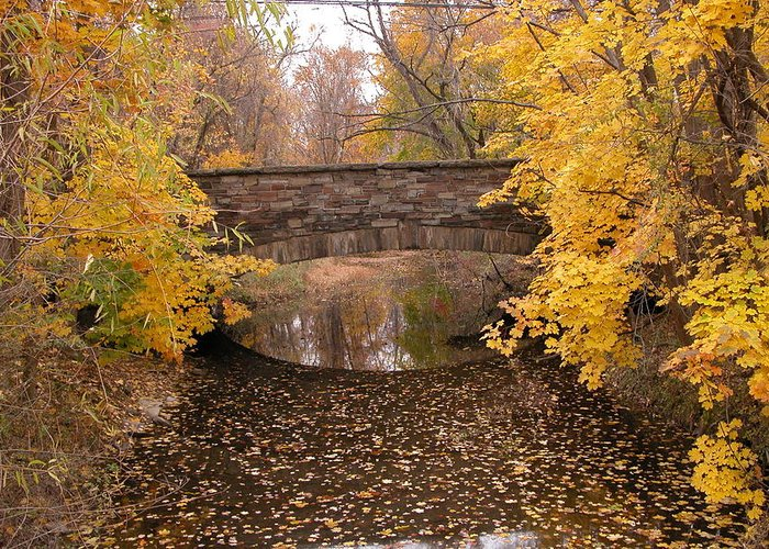 Landscape Water Greeting Card featuring the photograph Old Bridge by Nancy Barch