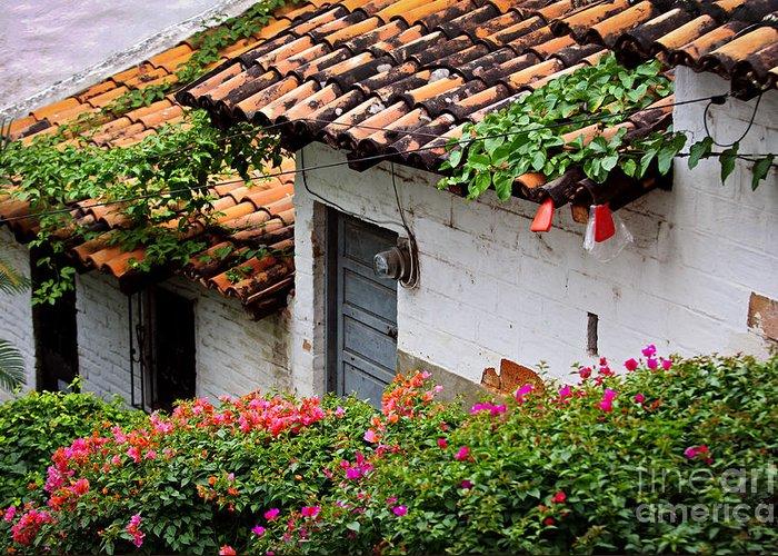 Puerto Vallarta Greeting Card featuring the photograph Old Buildings In Puerto Vallarta Mexico by Elena Elisseeva