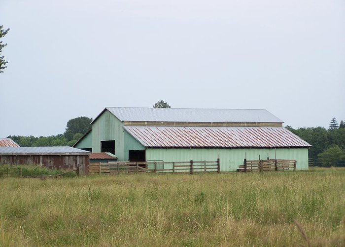 Barn Greeting Card featuring the photograph Old Green Barn  Washington State by Laurie Kidd