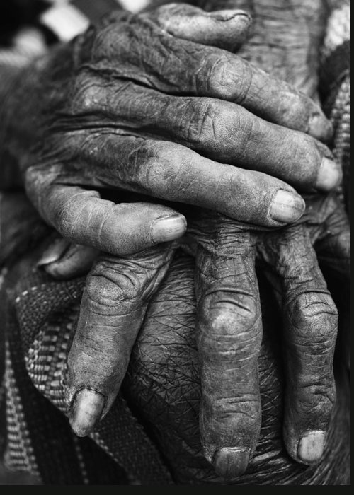 80-90 Yrs Greeting Card featuring the photograph Old Hands 3 by Skip Nall