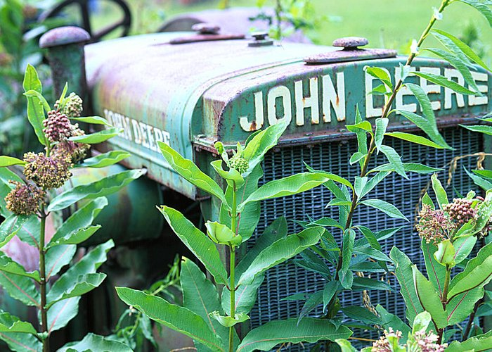 Old Greeting Card featuring the photograph Old John Deere by Robert Ponzoni