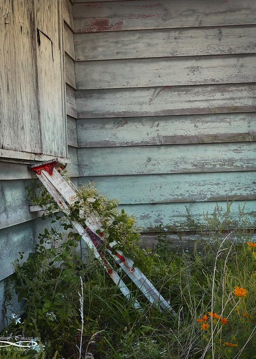 Abandoned Greeting Card featuring the photograph Old Ladder by Chris Daugherty