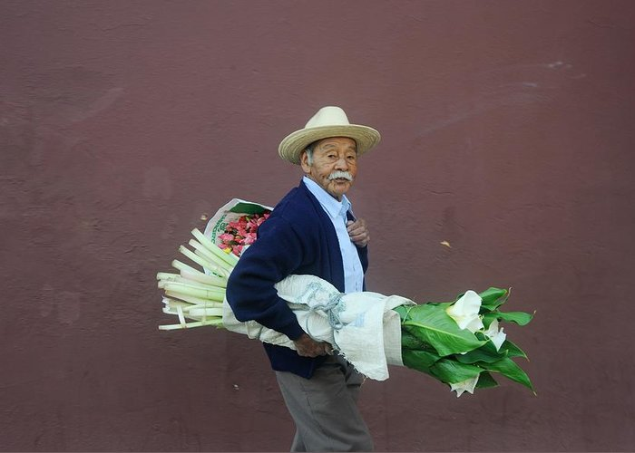 Flowers Greeting Card featuring the photograph Old Man With Flowers by Joseph Cosby