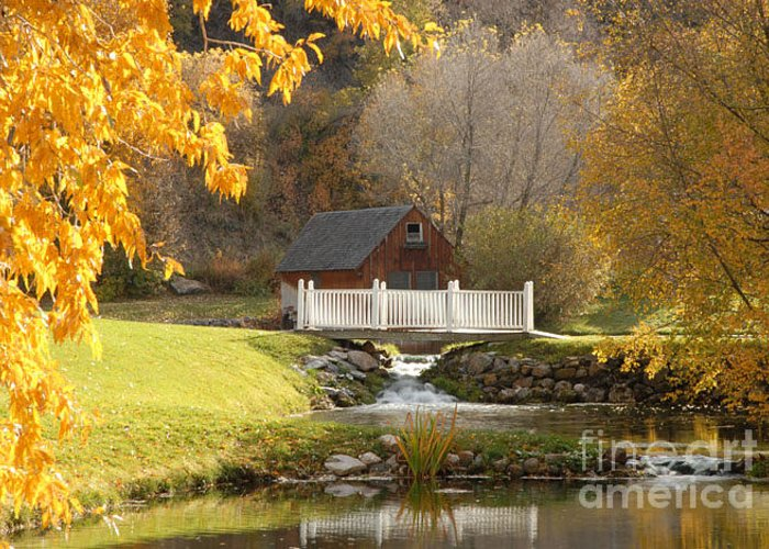 Mill Greeting Card featuring the photograph Old Mill In Autumn by Dennis Hammer