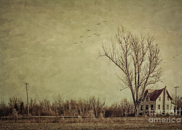 Aged Greeting Card featuring the photograph Old Rural Farmhouse With Grunge Feeling by Sandra Cunningham