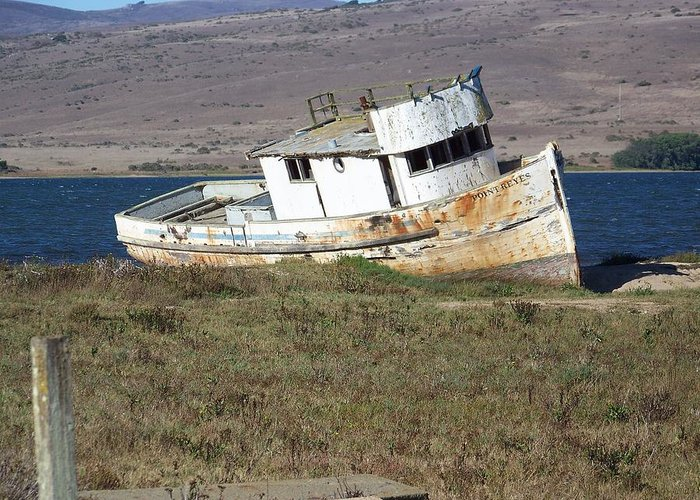 Waterscape Greeting Card featuring the photograph Old Rust Bucket by Maggie Cruser