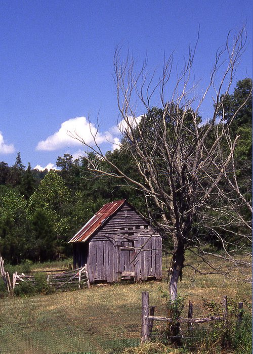 Greeting Card featuring the photograph Old Shack by Curtis J Neeley Jr