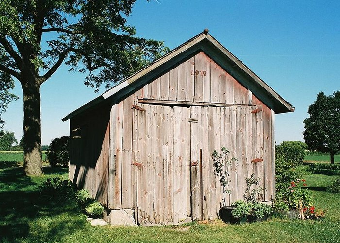 Shed Greeting Card featuring the photograph Old Shed by Lauri Novak