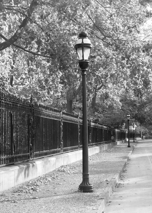 Black And White Greeting Card featuring the photograph Old Street Lights by Amanda Vouglas