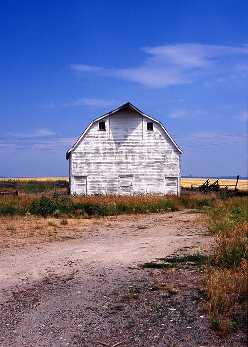 Barns Greeting Card featuring the photograph Old White Barn by Kathy Yates